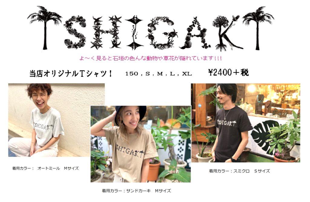 ISHIGAKI Tシャツ